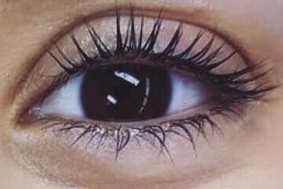 Dienstleistungen Lashstyle and beauty lash lifting